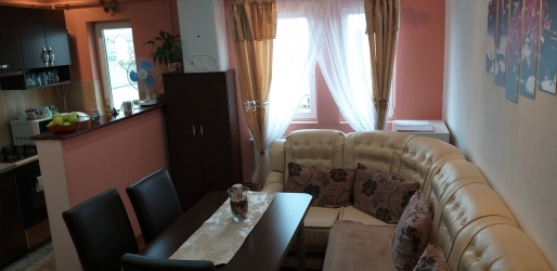 Apartament cu 2 camere ,Turnisor