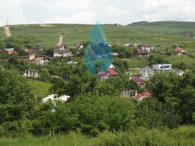 1278mp teren Plopii fara Sot-Dealul Bucium-1