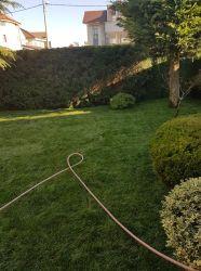 Amenajari gradini, gazonare, sisteme de irigatii