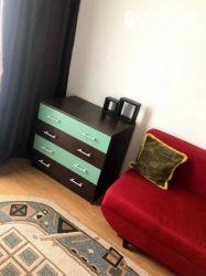 Apartament 1 camera PETFRIENDLY - Iris