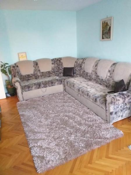Apartament cu 3 camere in zona BUCOVINA- TORONTAL la 380 euro-15