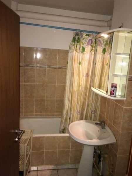 Apartament de inchiriat in Timisoara-8