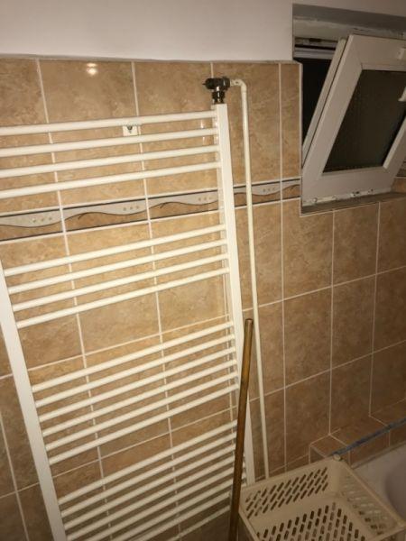 Apartament de inchiriat in Timisoara-9