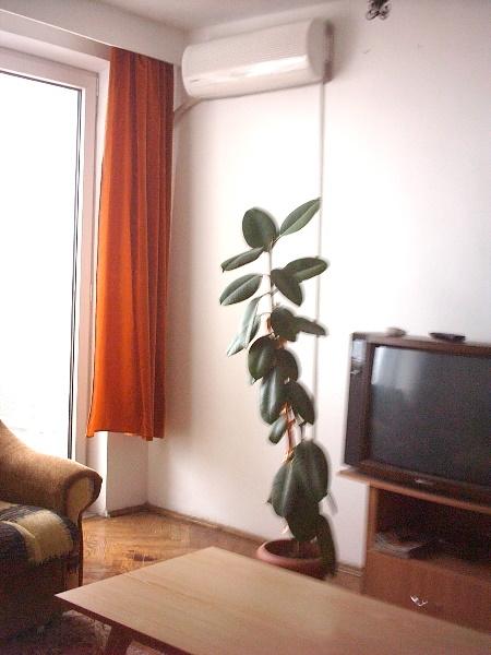 Apartament de inchiriat la mare pentru sezonul estival-2