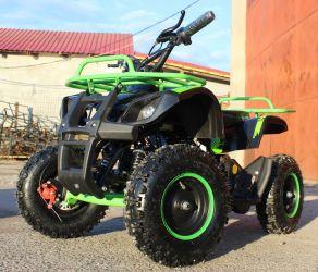 ATV electric pentru copii Eco Torino 800W  36V Deluxe #Green