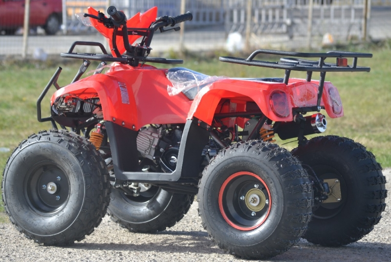 Atv T-rex 125cc Nitro-Motors Germany 2019 casca cadou-1