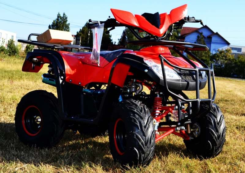 Atv T-rex 125cc Nitro-Motors Germany 2019 casca cadou-5