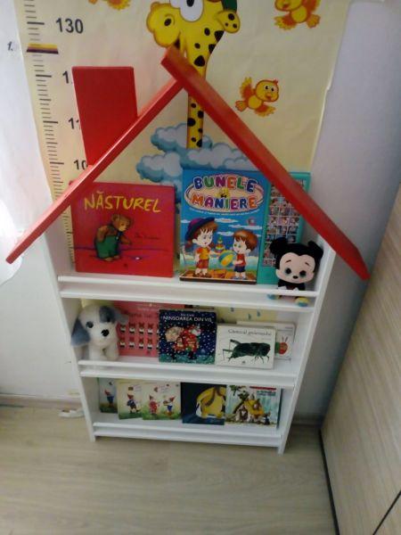 Biblioteca tip casuta-1