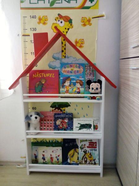 Biblioteca tip casuta-2