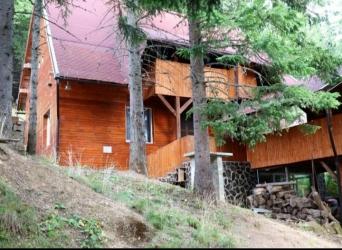 Cabana Paltinis Sibiu