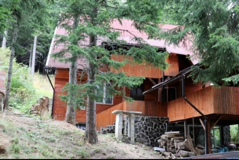 Cabana Paltinis Sibiu-11