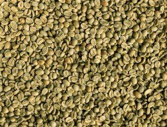 Cafea Verde Brazilia Mogiana 19/20, Arabica 100%