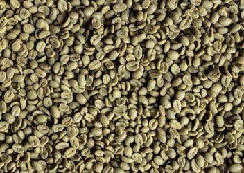 Cafea Verde Columbia Genova Quindio 19/20, Arabica 100%
