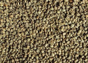 Cafea Verde GUATEMALA Huehuetenango 19/20, Arabica 100%