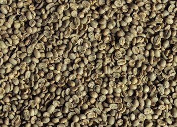 Cafea Verde HONDURAS Las Adelfas ORGANIC 19/20, Arabica 100%