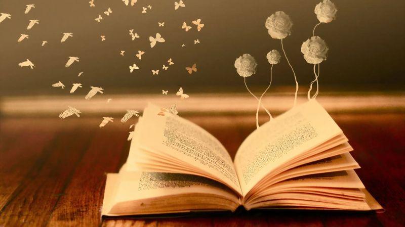 Cartea ta te asteaptă-4