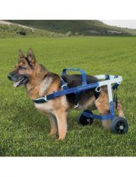 Carucior profesional Balto Off – Road pentru caini cu probleme locomot