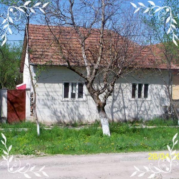 Casa  Arad localitate Brazii cu piscina langa rau -1