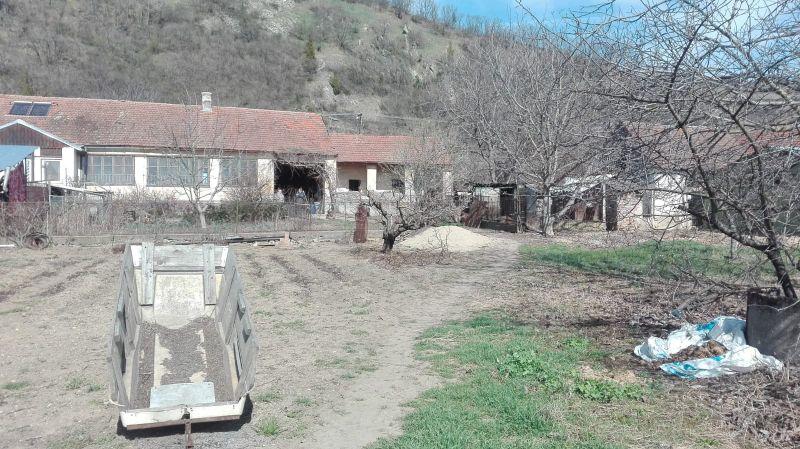 Casa cu teren total 1871 mp la Paulis-2