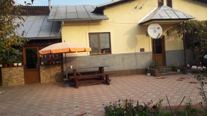 Casa de vanzare in Puchenii Mari la 15 km de Ploiesti-1