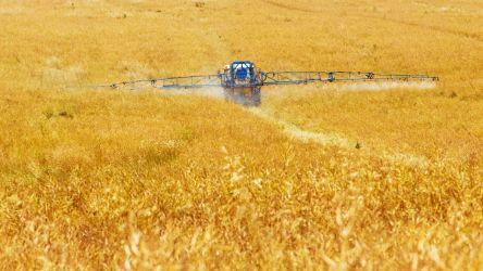 Dau in arenda teren agricol suceava 600 hectare cu utilaje aferente