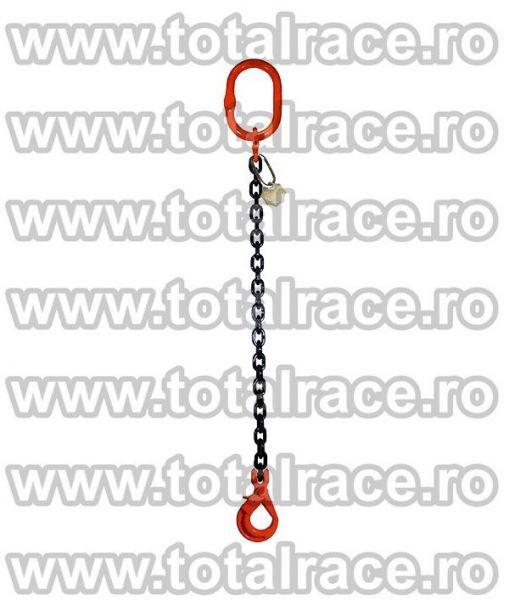 Dispozitive de ridicare din lant cu un brat-3