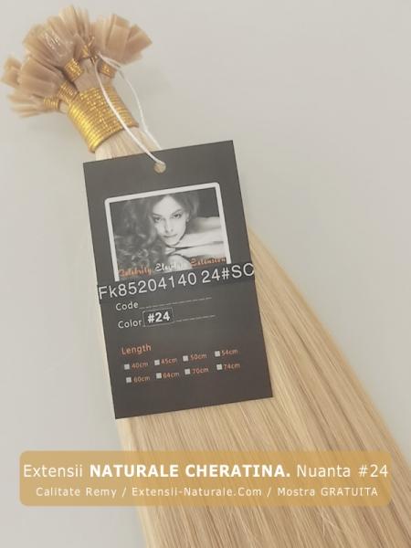 Extensii par natural Remy. Clip On. Cheratina. Mostra gratis-1