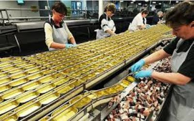 Fabrica de preparate si conserve din peste Norvegia/ 2500 euro