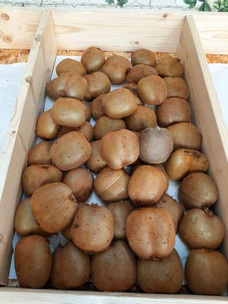 Fructe si legume proaspete Aprozar cu livrare gratuita in Sibiu-19