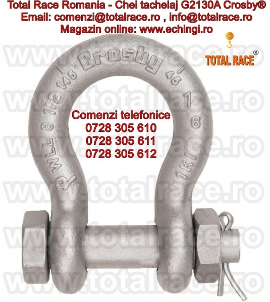 Gambeti / shackles forjate G2130A Crosby® -3