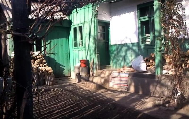 Gospodarie taraneasca-4