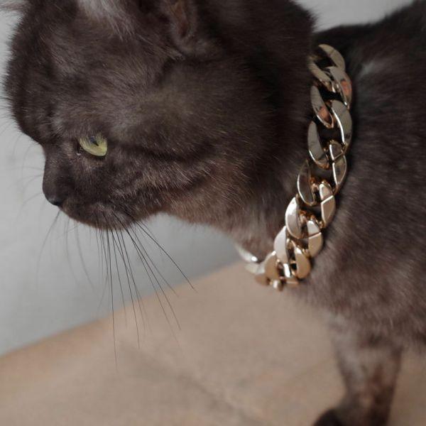 Lant accesoriu pentru caini si pisici, lant plastic pentru animale-1