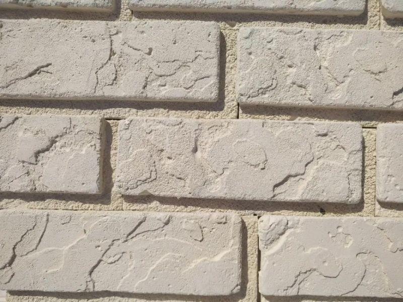 Matricea de cărămidă cu îmbinare pentru plăci de ipsos beton Larnaca-7