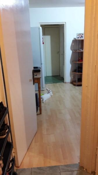 Proprietar, vand apartament 2 camere, Straja, sector 4-1