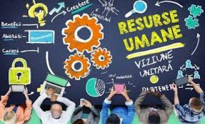 Servicii pentru angajatori