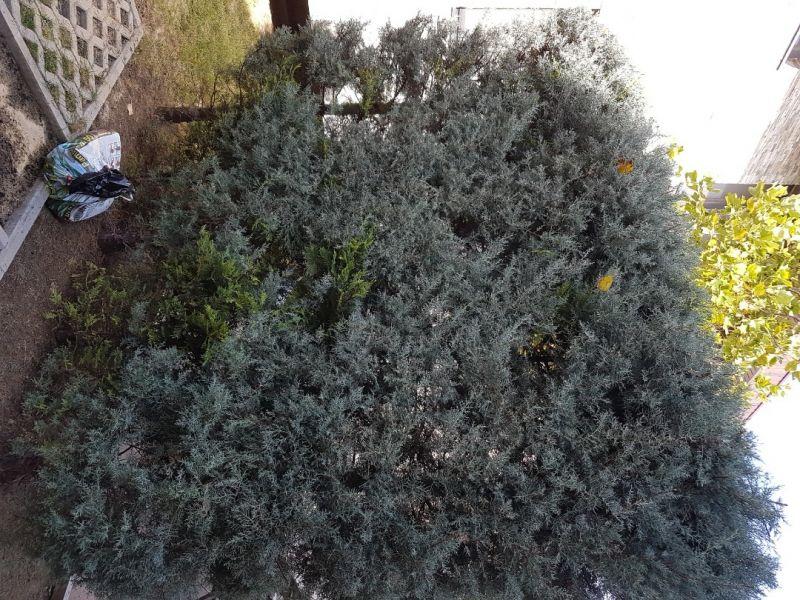 Siteme irigatii - gazon - spatiul verde-8