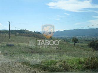Teren arabil de vanzare in Sebes judetul Alba 16000 mp