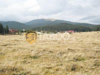 Teren de vanzare 1041 mp intravilan pe Valea Sebesului judetul Alba
