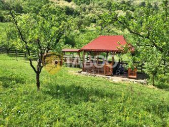 Teren extravilan 1036 mp de vanzare in Laz pe Valea Sebesului