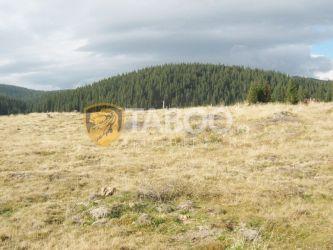 Teren intravilan 1165 mp de vanzare pe Valea Sebesului judetul Alba