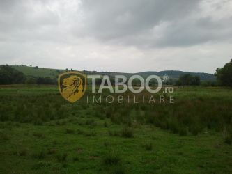 Teren intravilan 5000 mp de vanzare in Sibiu localitatea Tocile