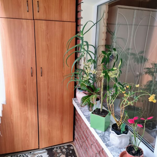 Vand apartament 3 camere,Marasti zona I, str. Ciocarliei-15