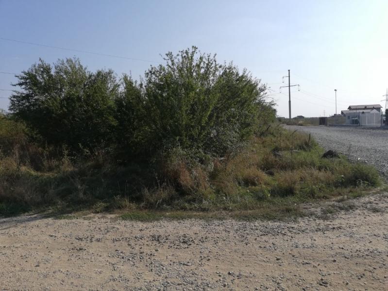 Vand teren 800mp intravilan Oras Pantelimon - Str. Poet George Tarnea-1
