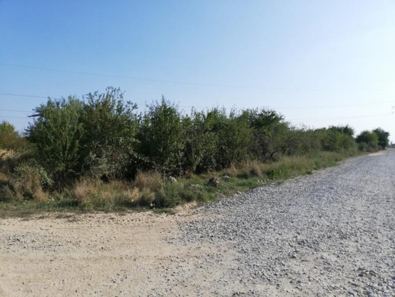 Vand teren 800mp intravilan Oras Pantelimon - Str. Poet George Tarnea-3