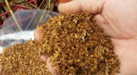 Vand tutun import ungaria calitatea 1