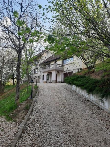 Vila situata in perimetrul Stejaris - Calea Poienii-1