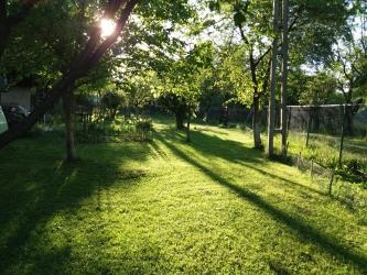 zona Breaza, vand 500 l tuica de prune an 2015 la pret negociabil!