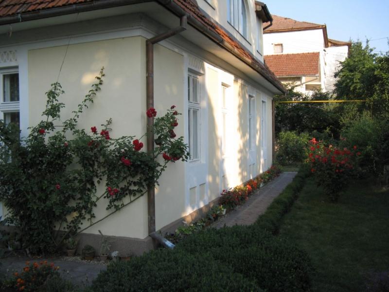 Zona Garii - De vanzare 2 apartamente la casa, parter si mansarda-5